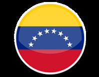 icon-venezuela-grupo-testek